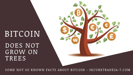 Bitcoin does not grow on Trees and nor did it spring out of thin air